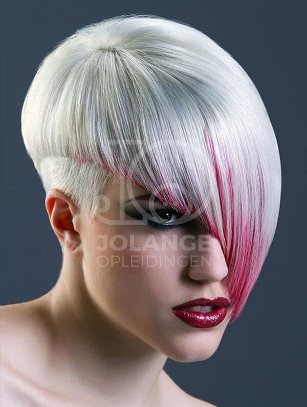 Hair Colour Basis